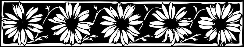 Free daisy border