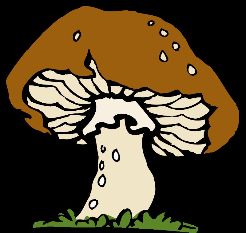 free clipart big mushroom johnny automatic rh 1001freedownloads com mushroom clipart black and white mushroom clipart picture