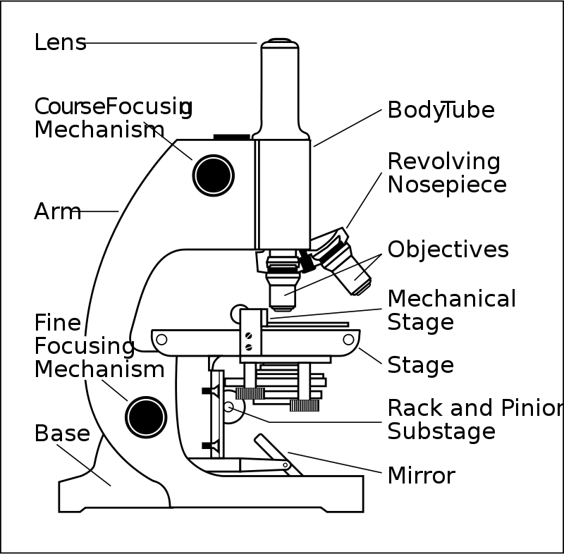 Free microscope with labels