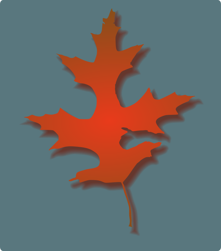 Free Oak Leaf - Autumn