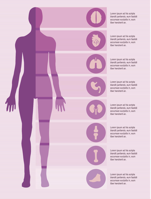 Free Female body infographics elements