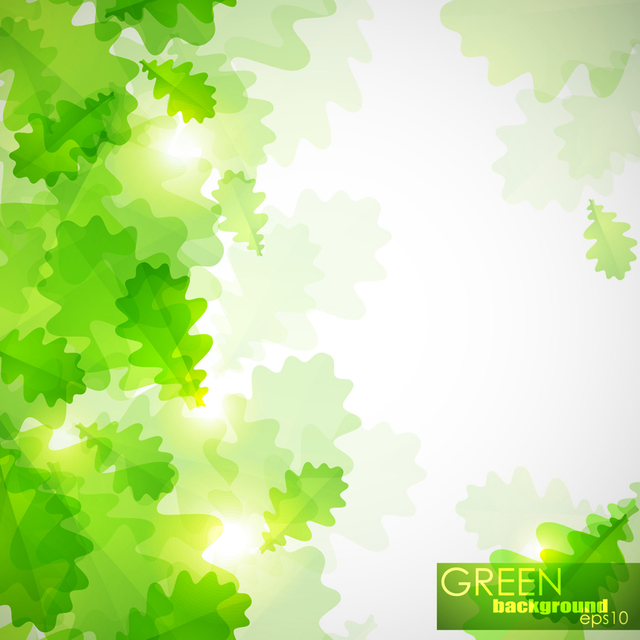 Free Bright Sunlight with Green Leaves in Front