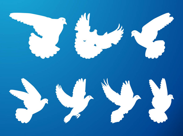 Free Silhouette Flying Pigeon Pack