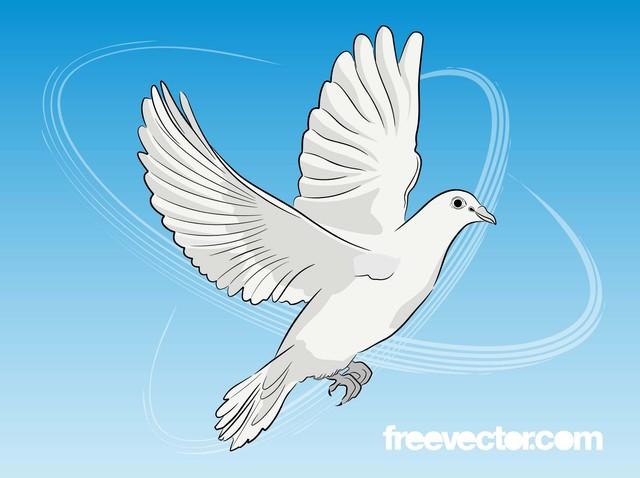 Free Flying Dove Black & White Sketch