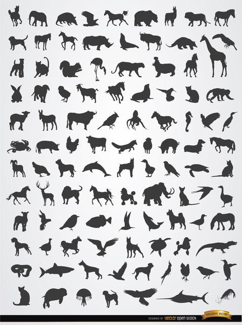 Free Terrestrial, aerial, and aquatic animal silhouettes