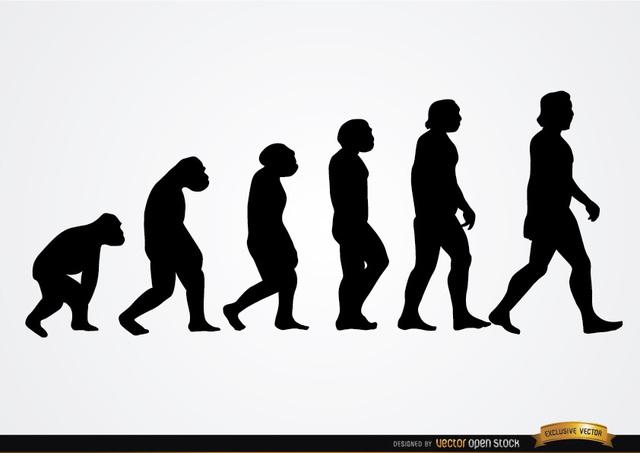 Free Human evolution silhouettes