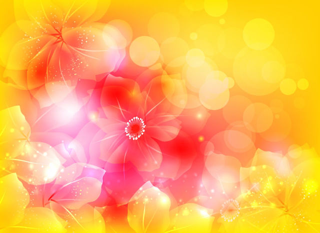 Free Full Blossom Bright Flower with Bokeh