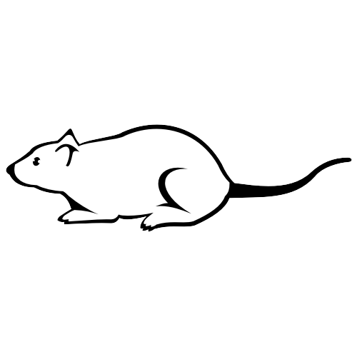 Free Black and White Mouse Sketch