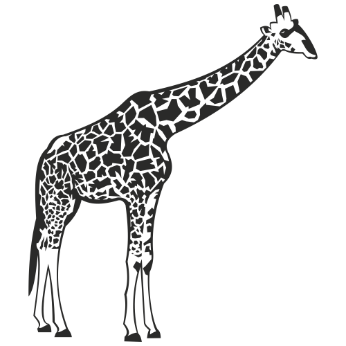 Free vectors black white giraffe with detail body print free vector