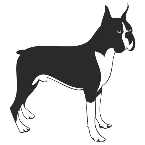 Free Boxer dog vector