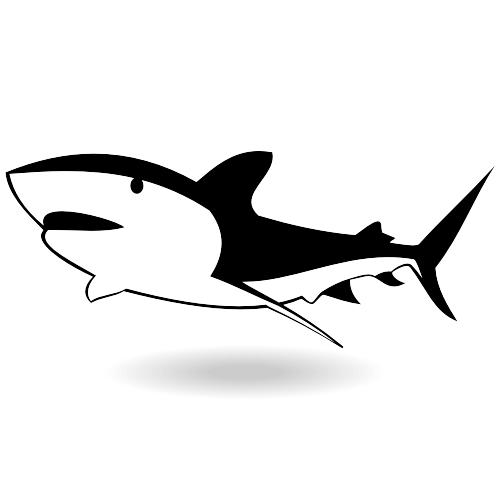 Free Big shark vector