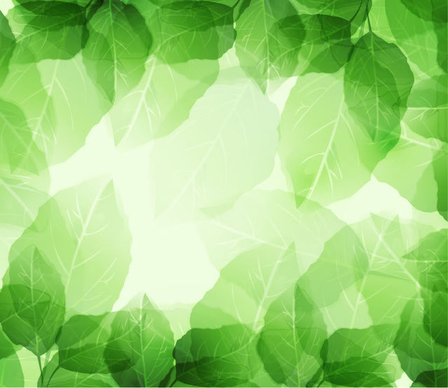 Free Fresh Green Leaves Frame Background