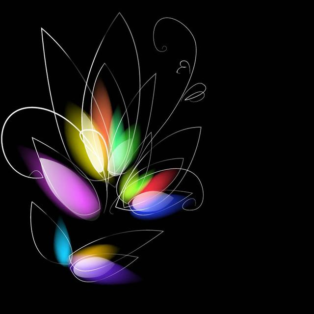 Free Colorful Dark Background with Blurry Flower