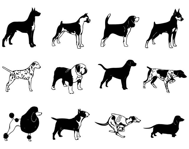 Free Black & White Breed Dog Silhouette Pack