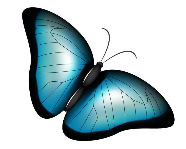 Free Stylish Blue Butterfly