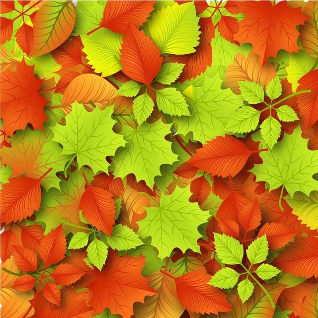 Free Fallen Autumn Leaves Background