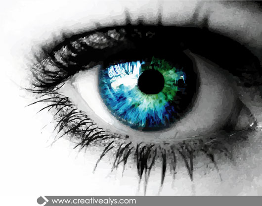 Free Vectors: Realistic Eye with Blue Eyeball | Creativealys