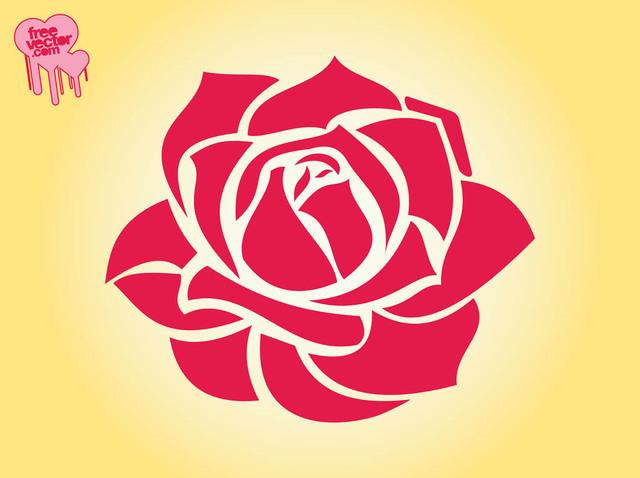 Free Blooming Red Rose