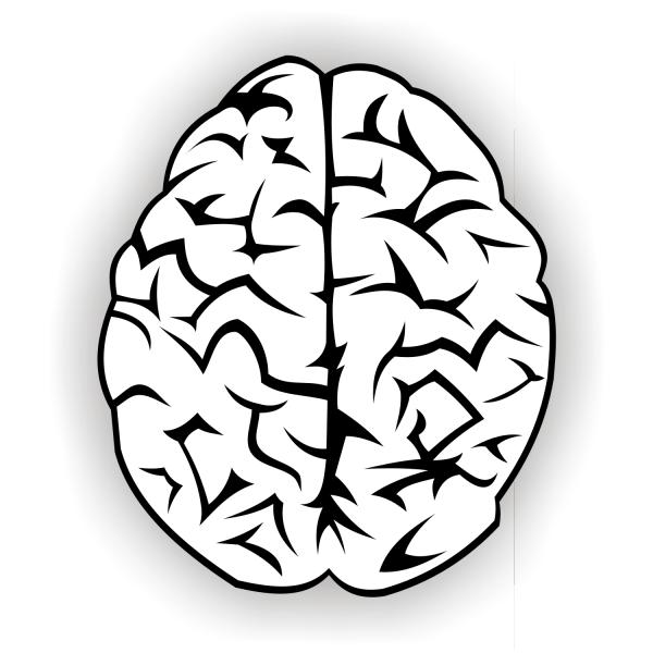 Free Brain vector free