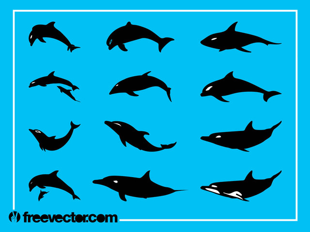 Free Vectors: Silhouette Dolphin Pack | Free Vector