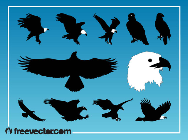 Free Silhouette Eagle Bird Pack