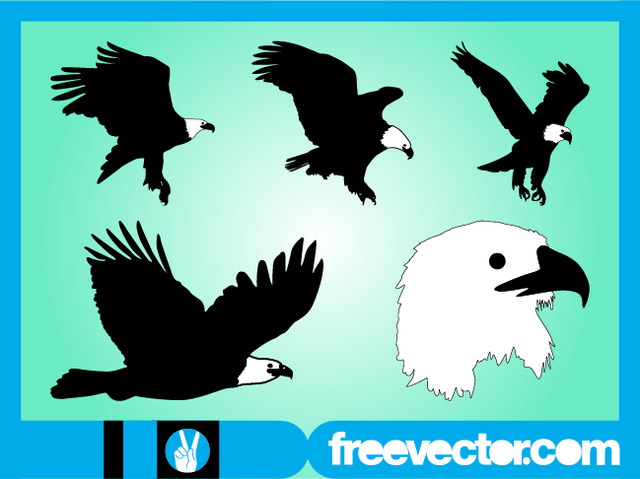 Free Bald Eagle Nature Animal Set