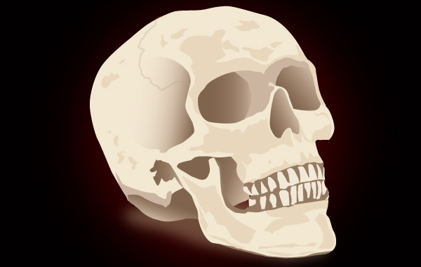 Free Realistic Skull for Halloween