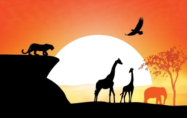 Free Sunset View of Safari