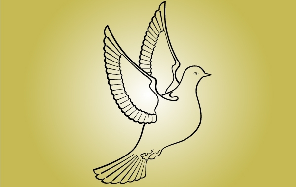 Free Line Art Pigeon Bird of Peace