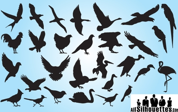 Free Vectors: Silhouette Bird Pack | All-Silhouettes