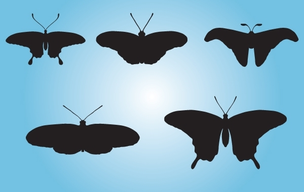 Free Black Butterfly Pack