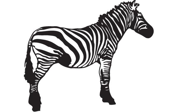 Free Vector Zebra