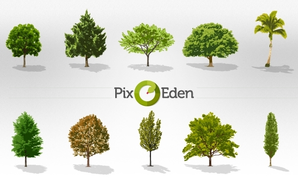 Free Vector Realistic Trees