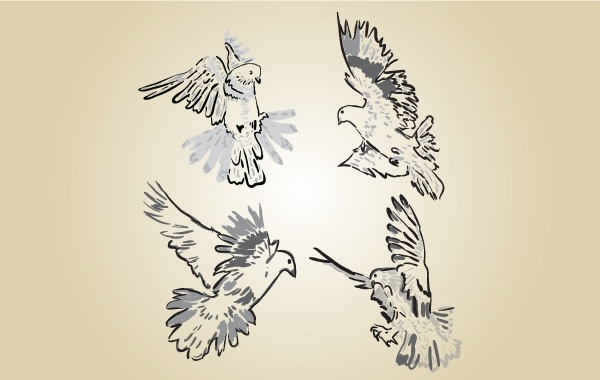 Free Sketchy Pigeon Vector