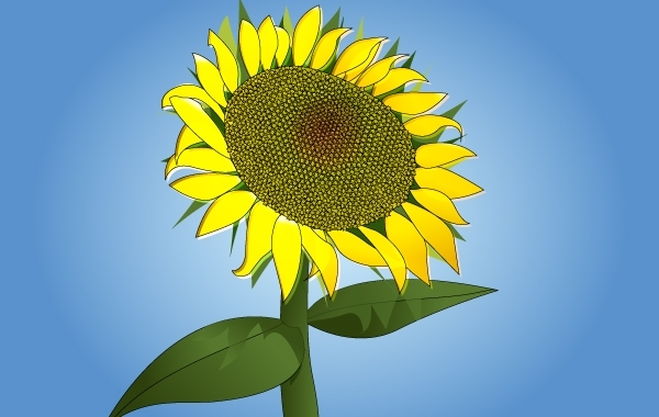 Free Photorealistic Sunflower Vector