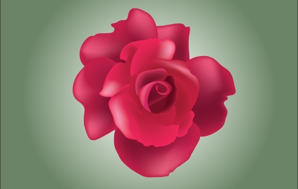 Free Red Rose Vector