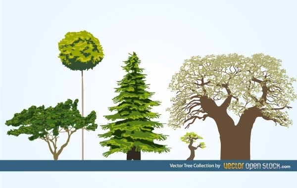 Free Vector Tree Collection