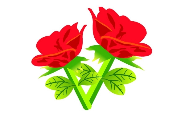 Free Free Vector Red rose Flowers
