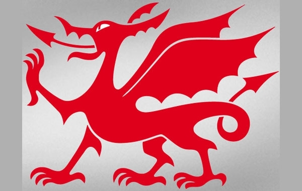 Free Welsh Dragon