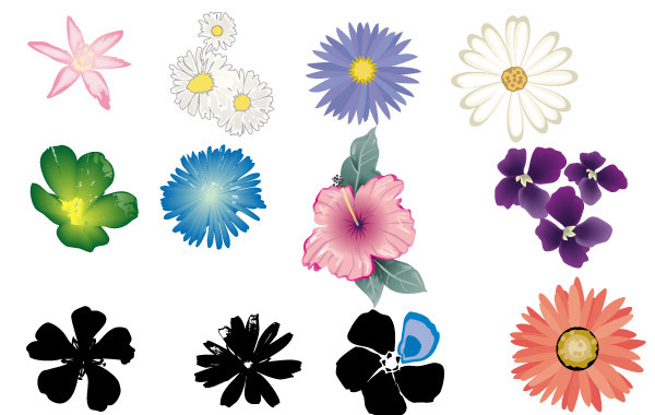 Free Flower Vector Set in Color