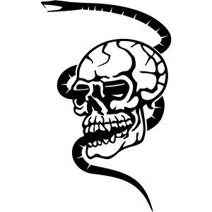 Free Skull Free Vector