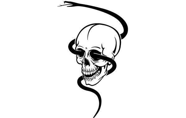 Free Skull With Black Snake
