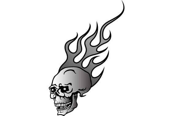 Free Skull On Fire Vector