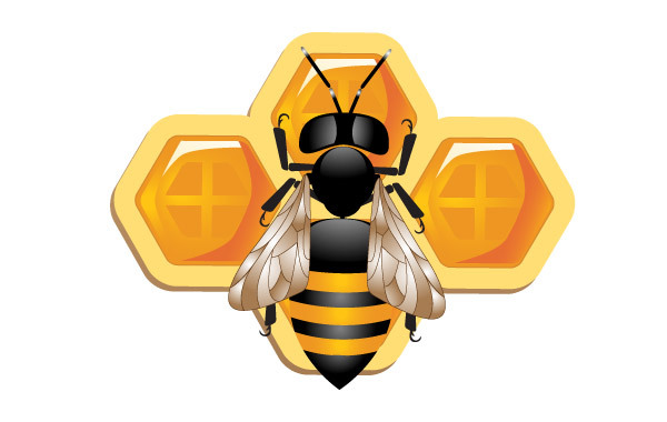 Free 3D bee and Honeycomb