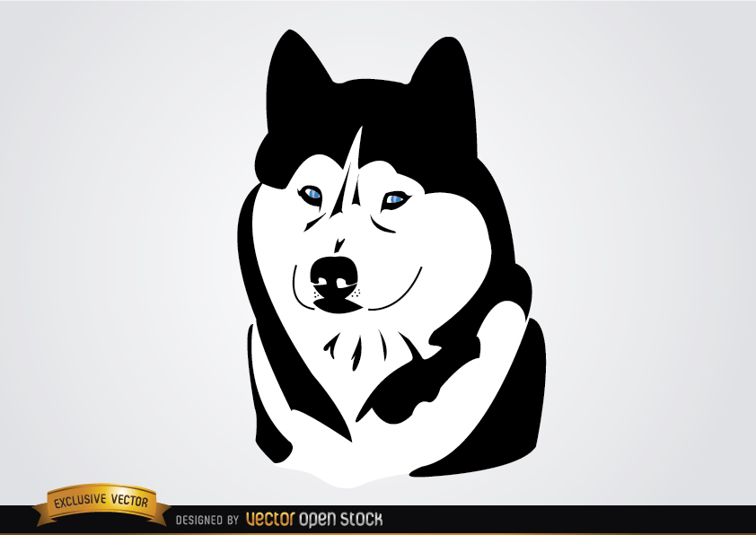 Free Husky Ciberian Dog