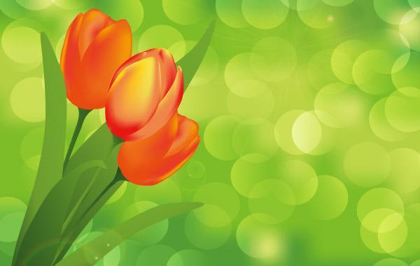 Free Flower with Green Background Vector Art