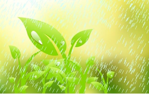 Free Plant in the rain