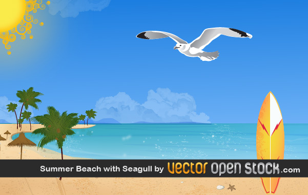 Free Summer beach with seagull