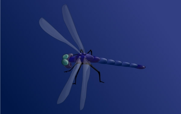 Free Blue Dragonfly clip art