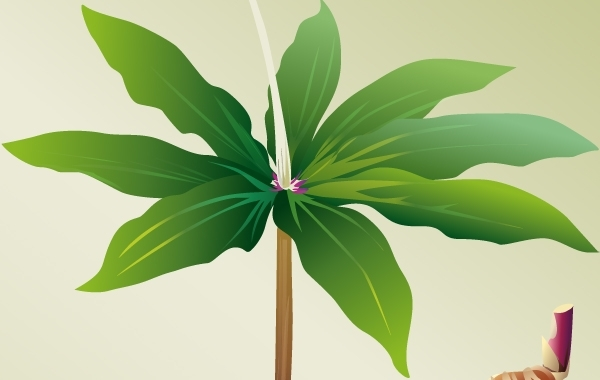 Free VECTOR PLANT